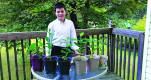Dovid Dear standing in front of his esrog plants.