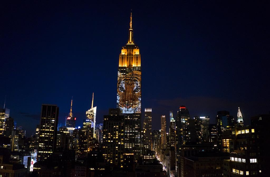 Images of endangered species are projected Saturday night on the Empire State Building. (AP Photo/Craig Ruttle)