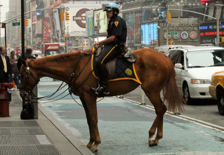 A police officer on a horse near Times Square. (Mari Gildea/Flickr)
