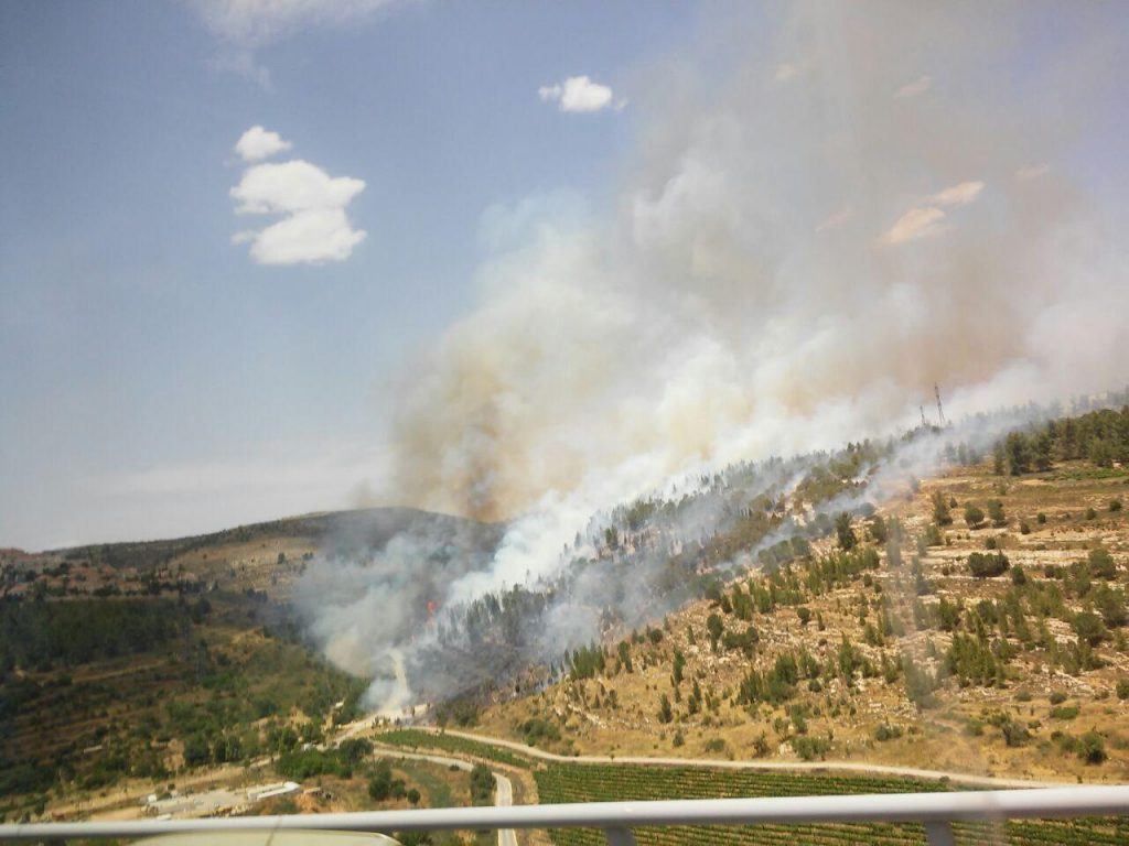Forest fire near Ramot, (Yerushalayim Fire Brigade)