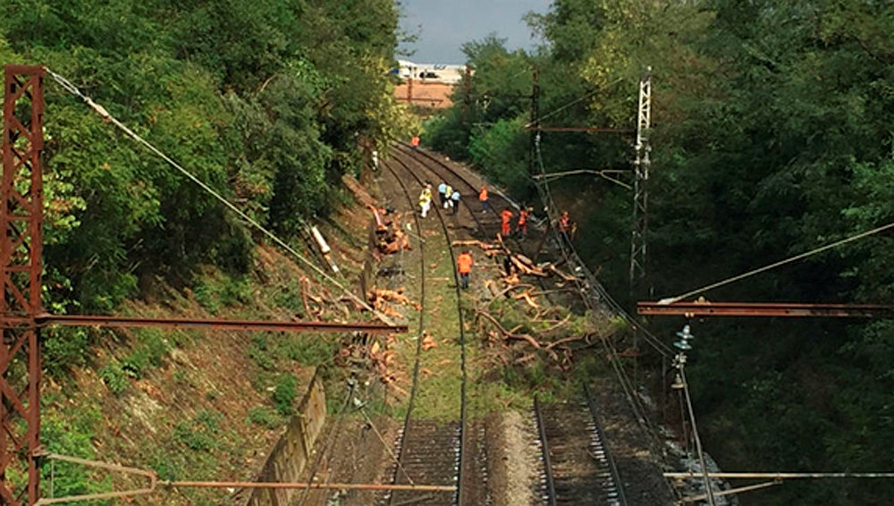 13 passengers badly injured when french train hits fallen tree jewish news israel news. Black Bedroom Furniture Sets. Home Design Ideas