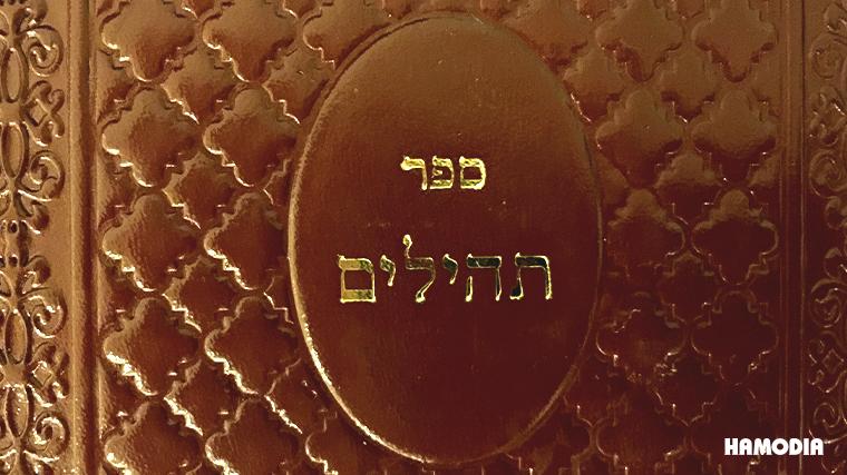 tehillim, tefillos, Vizhnitzer Rebbe