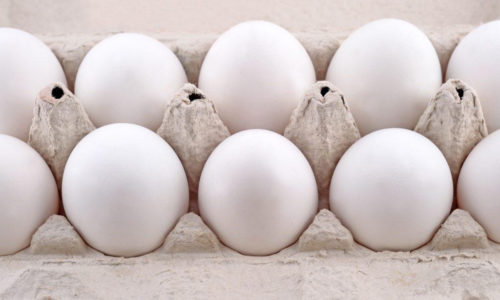 eggs Belgium