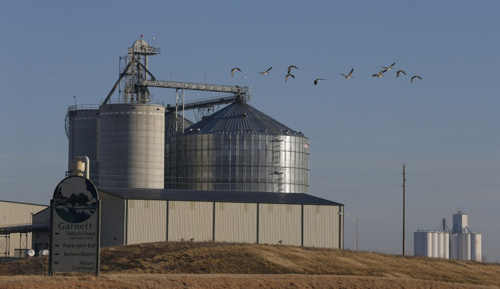 In this Feb. 5, 2013 photo geese fly by the East Kansas Agri-Energy ethanol plant in Garnett, Kan. that suspended production last year. Corn growers had high hopes going into the 2012 planting season but the drought that began last spring hit the corn crop hard. As a result, corn prices skyrocketed and corn has become scarce in some regions, forcing 20 ethanol plants around the country to halt production. (AP Photo/Orlin Wagner)