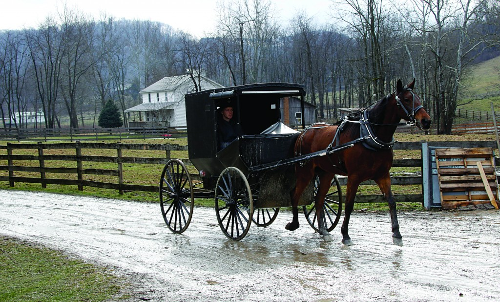 An Amish buggy is shown being driven down the road between Amish farms in Bergholz, Ohio. (AP Photo/Keith Srakocic)