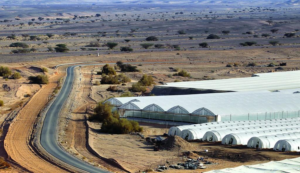 Greenhouses at Ein Yahav in the Judean Desert. (Flash90)