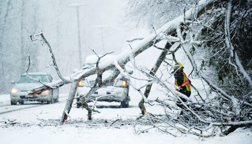 Volunteers remove a downed tree on the road near Chancellorsville, Va. A snowstorm blanketed the Fredericksburg region Wednesday, closing schools, county governments and roads. (AP Photo/The Free Lance-Star, Reza A. Marvashti)