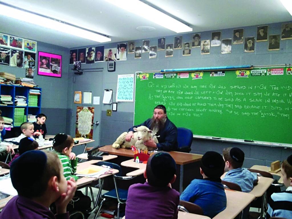 Rabbi Yitzchok Scherman on Tuesday teaching his third-grade class in Yeshivah Tiferes Yisroel the dinim associated with the Korban Pesach while displaying a live lamb.