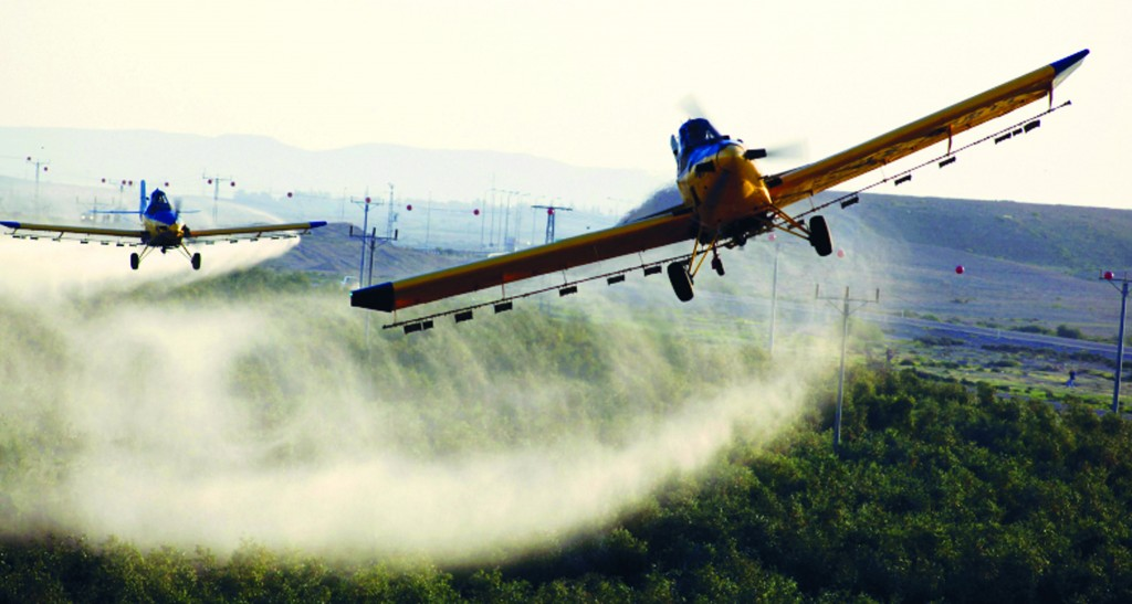 Aircrafts sprayed pesticides in the fields in Ramat Hanegev Monday. as a new swarm of locusts hit the region. Israel has experienced several minor locust infestations in recent days, as small groups break off from an enormous swarm in the Giza region of Egypt. (Flash90)