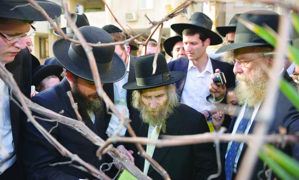 Hagaon Harav Aharon Leib Steinman, shlita, recited Birkas Ha'ilonos as Nisan is ushered in. (JDN)