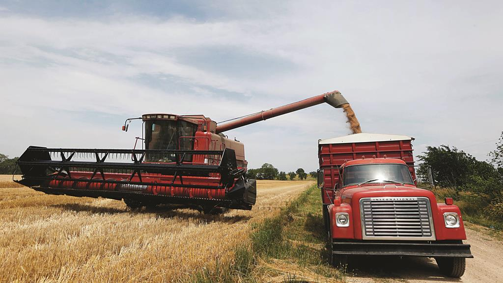 In this June 24, 2013 file photo, Lester Reimer harvests wheat on his farm near Lebo, Kansas. Russia is a competitor of Kansas in global wheat markets. Russia's ban on U.S. food imports will hurt Russia more than will hurt Kansas farmers, ranchers and agribusinesses, J.J. Jones, the state's trade director said Thursday (AP Photo/Orlin Wagner, File)