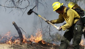 An AmeriCorps volunteer firefighter helps contain a spot fire in an evacuated area of forest, ranches and residences, in the Black Forest wildfire area, north of Colorado Springs, Colo., on Thursday. (AP Photo/Brennan Linsley)