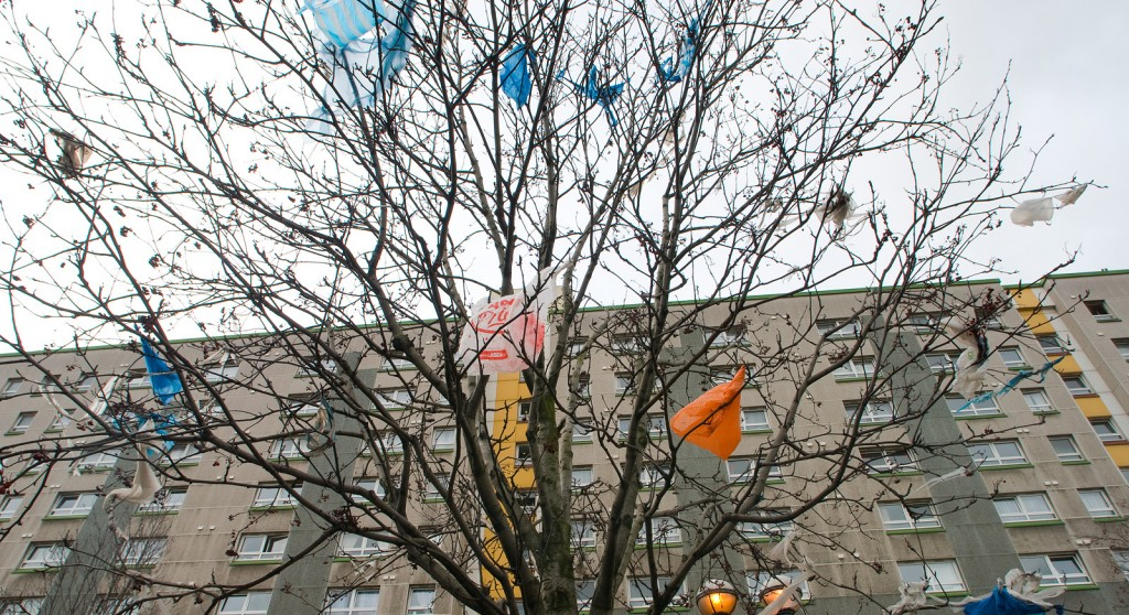 Plastic bags wave from a tree in New York City.