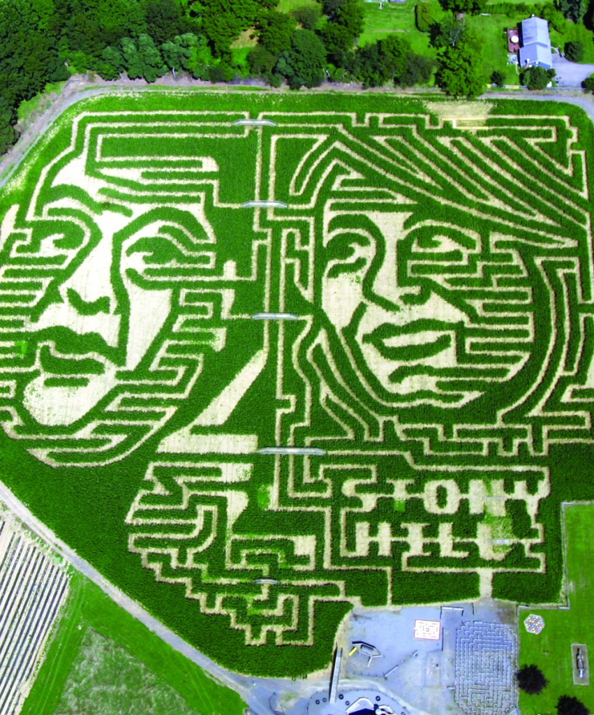 """The Stony Hill Farm Market cut the images of New Jersey Gov. Chris Christie and Democratic challenger Barbara Buono into a cornfield """"mazeadventure,"""" in order to get people interested in the race, which Christie is expected to handily win. (Stony Hill Farm Market)"""