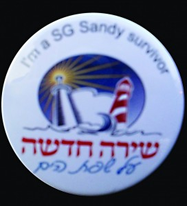 One of the special lapel pins made for Sea Gate Sandy survivors.