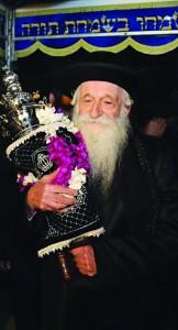 Harav Yekusiel Yehudah Meisels, shlita, Rav of Sea Gate.
