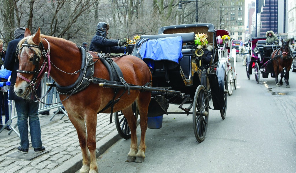 Passengers enjoy a horse-drawn carriage ride near Central Park Tuesday, a scene Mayor Bill de Blasio wants to end as soon as possible. (AP Photo/Frank Franklin II)