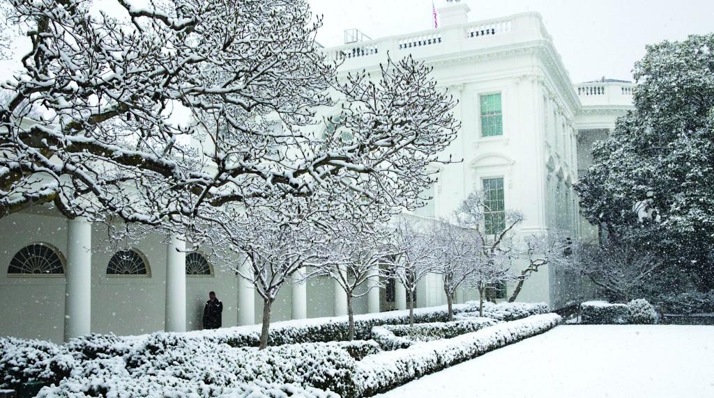Snow falls in the Rose Garden of the White House in Washington, Tuesday. (AP Photo/Jacquelyn Martin)