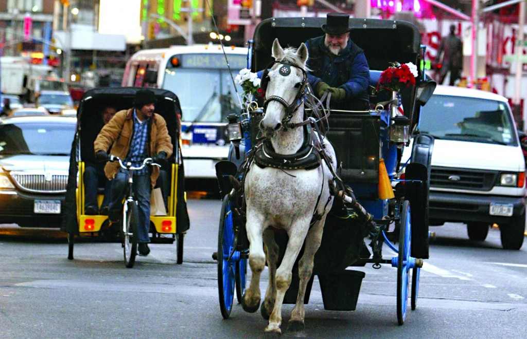A horse works during the day pulling a carriage down Broadway in Manhattan...