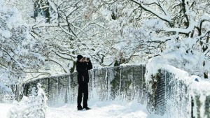 A man stops to take pictures of the snow-covered trees in Central Park Tuesday (AP Photo/Seth Wenig)