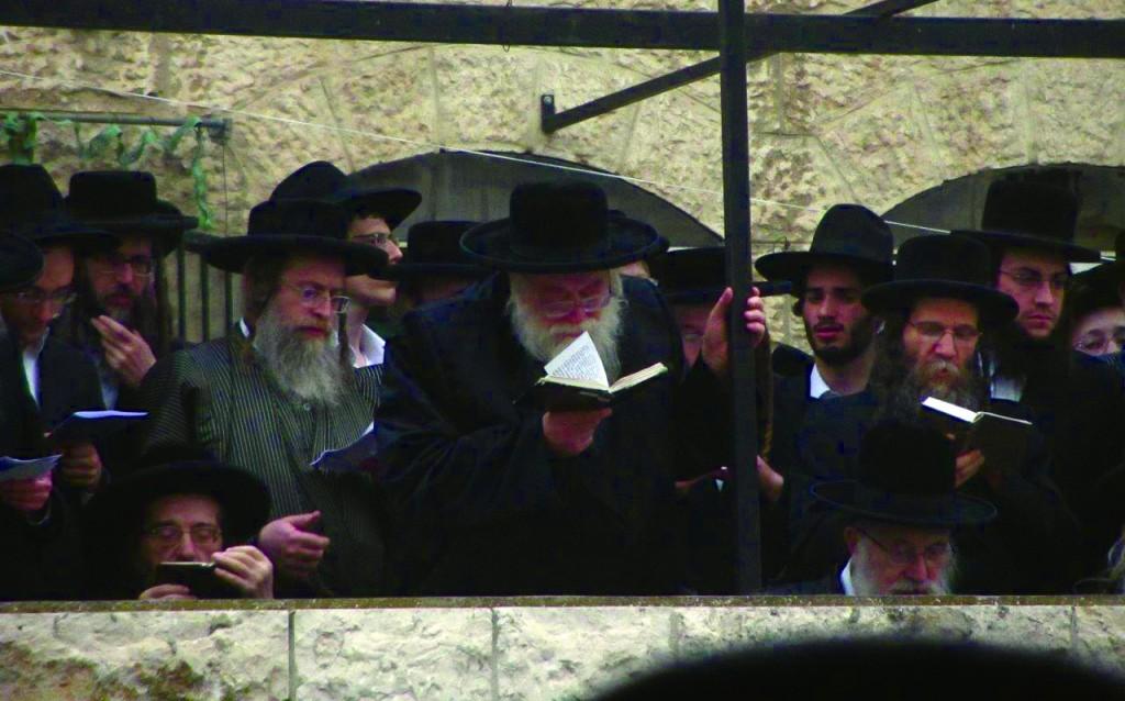 L-R: Harav Yaakov Meir Shechter, shlita; the Toldos Aharon Rebbe, shlita.