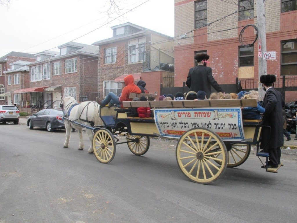 Talmidim of Boro Park's Satmar Yeshivah ride on a horse-drawn wagon as they prepare for Purim. (JDN)
