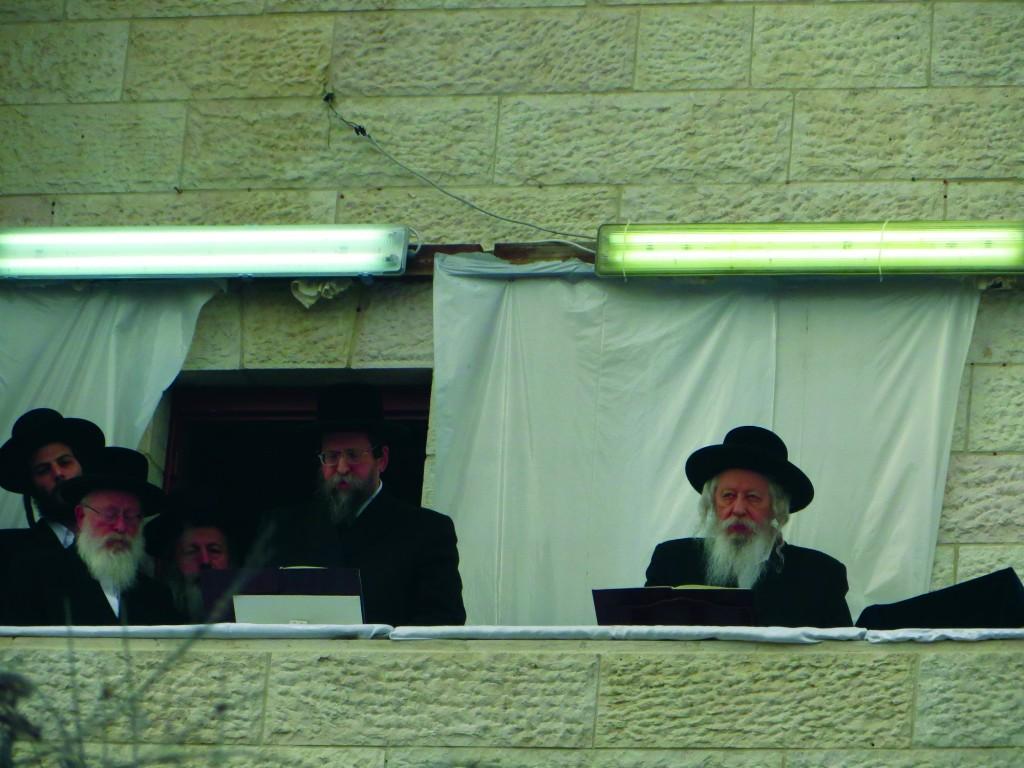 R-L: The Gerrer Rebbe, shlita, and the Boyaner Rebbe, shlita.