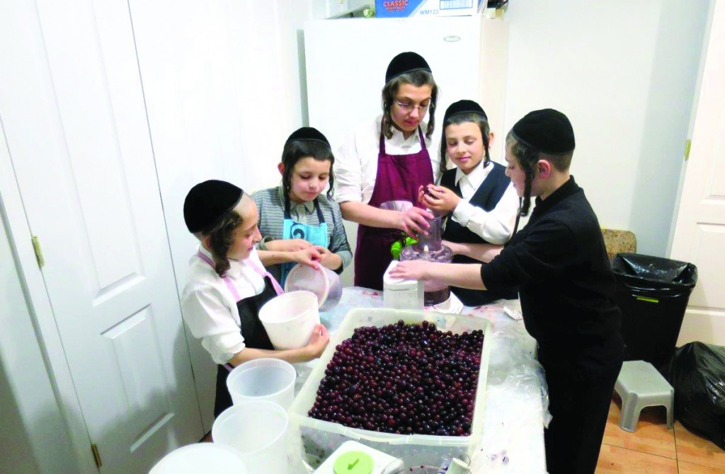 Preparing home-made grape juice for Pesach. (SZ Greenberg)