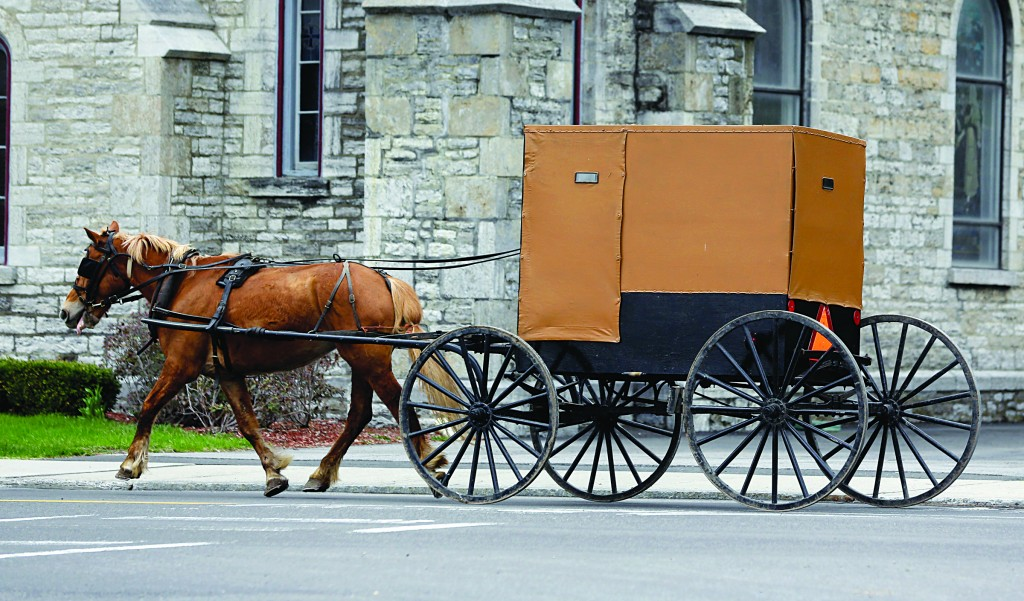 Traditional Transportation: An Amish buggy on Friday rides along a street in Canajoharie, N.Y. (AP Photo/Mike Groll)