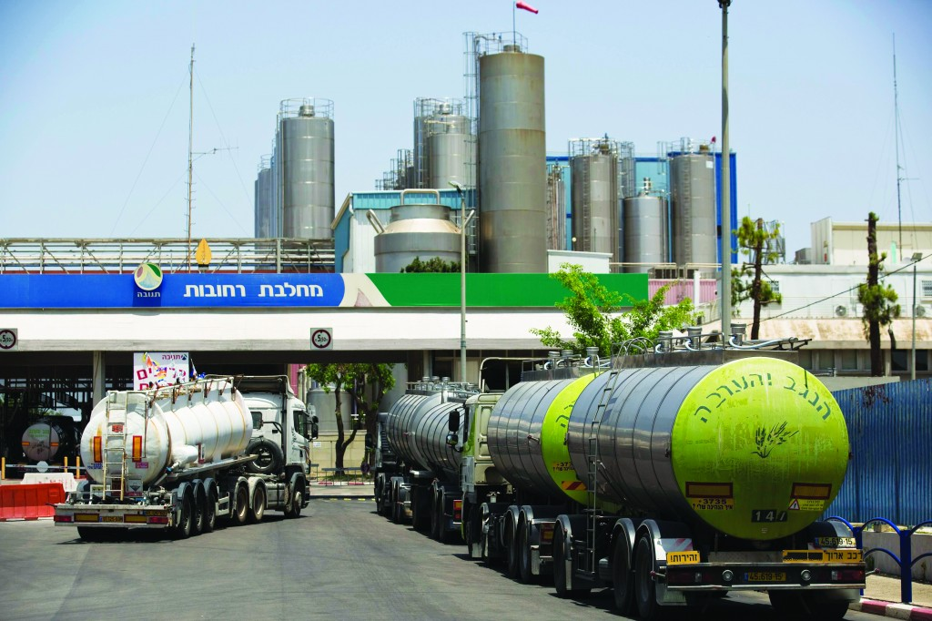 Milk tankers are parked outside Tnuva's factory in Rehovot, near Tel Aviv, on Thursday.  (REUTERS/Amir Cohen)