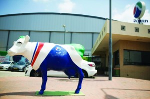 A statue of a cow painted in the colors of dairy firm Tnuva's logo stands outside the company's logistic center in the southern town of Kiryat Malachi on Thursday.  (REUTERS/Amir Cohen)