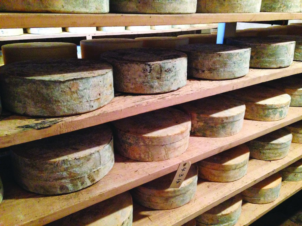 Cheese ages on wooden boards in an upstate New York plant (Cheese Underground)