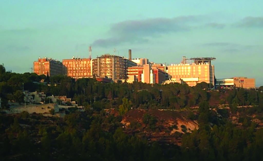 Hadassah Medical Organization, Ein Kerem, Yerushalayim. (wik)