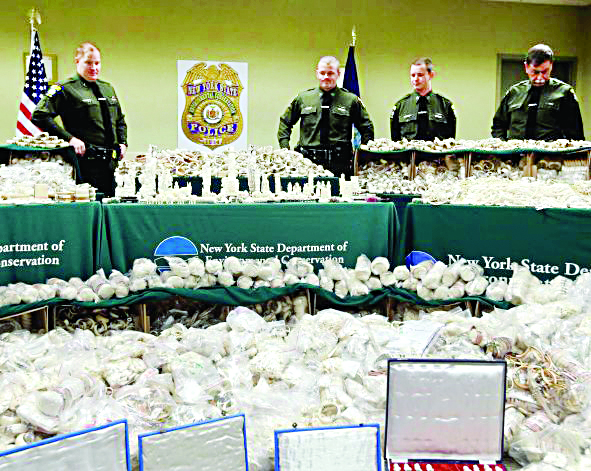 New York State officers in Albany stand behind confiscated ivory items that were for sale or passed through New York City. (AP Photo/Mike Groll)