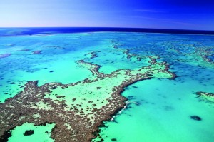 The Great Barrier Reef. Stretching 1429 miles, this natural icon is so large it can even be seen from outer space. English explorer and naval officer Captain James Cook discovered the Great Barrier Reef in 1770 the hard way, by running aground on it.