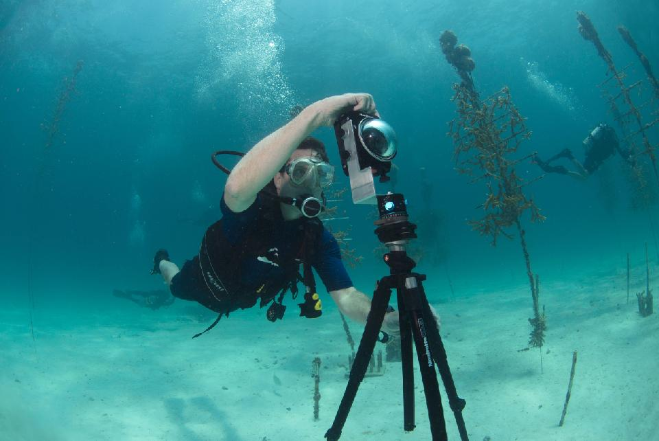 In this Aug. 9, 2014 photo, provided by Catlin Seaview Survey, Mitchell Tartt, of the Office of National Marine Sanctuaries, trains to take 360-degree panoramas of the corals off the coast of Islamorada, Fla. (AP Photo/Catlin Seaview Survey)