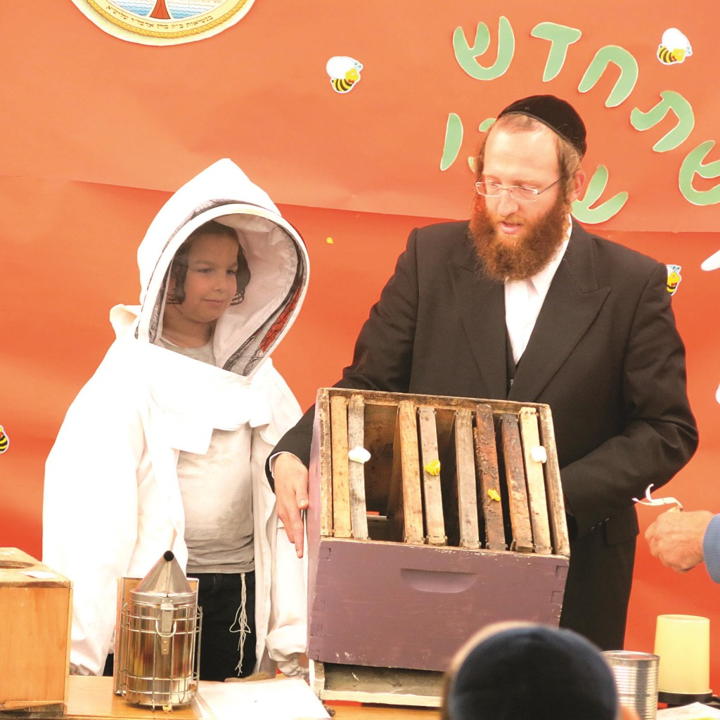 L'shanah Tovah U'mesukah: Talmidim at Munkatcher Talmud Torah in Boro Park were visited by a beekeeper who showed the children how his bees produce honey.