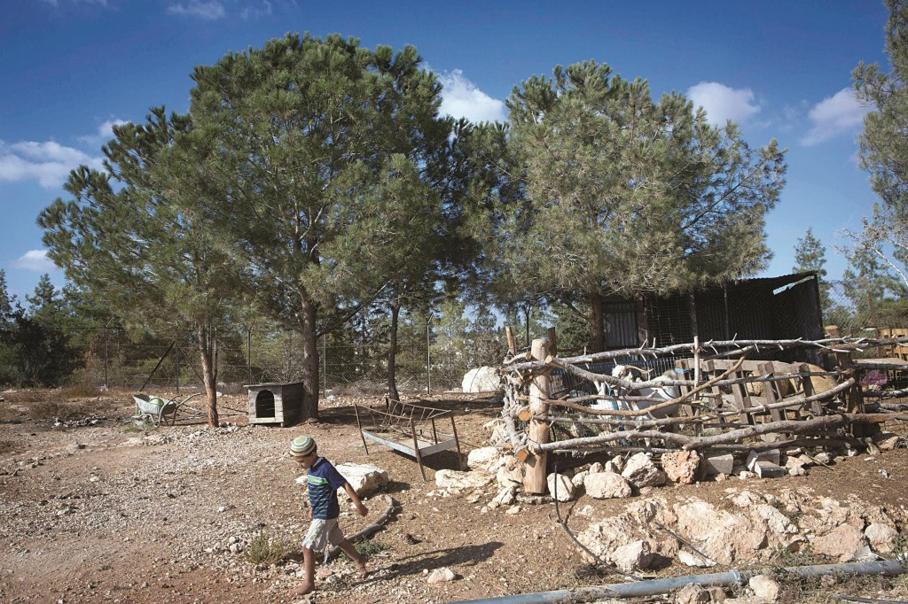 A bucolic scene at Gevaot, where government plans to build a city have sparked a round of condemnations. (Miriam Alster/FLASH90)