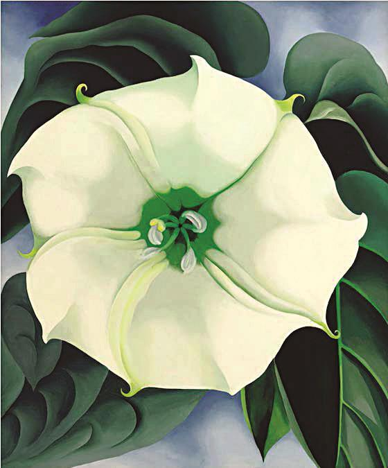 This painting of a simple while flower was sold Thursday for $44.5 million.