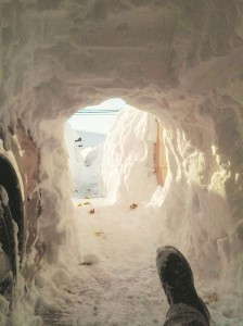 A man dug his way out of his house in Buffalo (above) while snow clings to a spider's web (below).