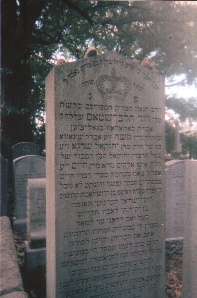 """Tziyun of Harav Dovid Halberstam, the Sokolover Rav, zt""""l. (PHOTO/text: Y. GESSER)"""