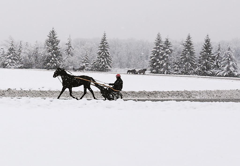 A horse and buggy driver takes a lap on a snowy Thursday morning in Saratoga Springs, N.Y. (AP Photo/Mike Groll)