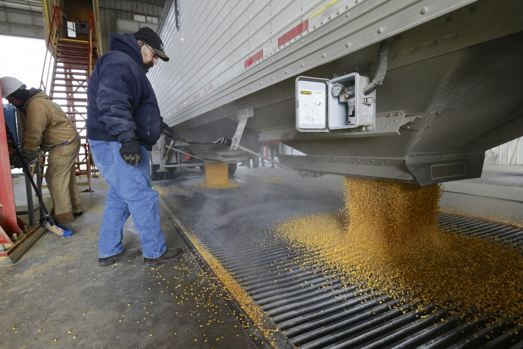 Corn is delivered to the Green Plains ethanol plant in Shenandoah, Iowa, on Jan. 6, 2015. (AP Photo/Nati Harnik)
