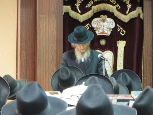 Hagaon Harav Don Segal, shlita