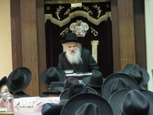 Hagaon Harav Dovid Schustal, shlita