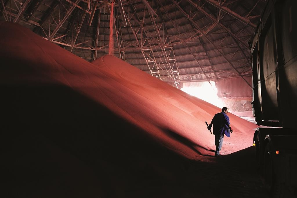 A worker walking by a pile of potassium at the Dead Sea Works. (Yaakov Naumi/Flash90)