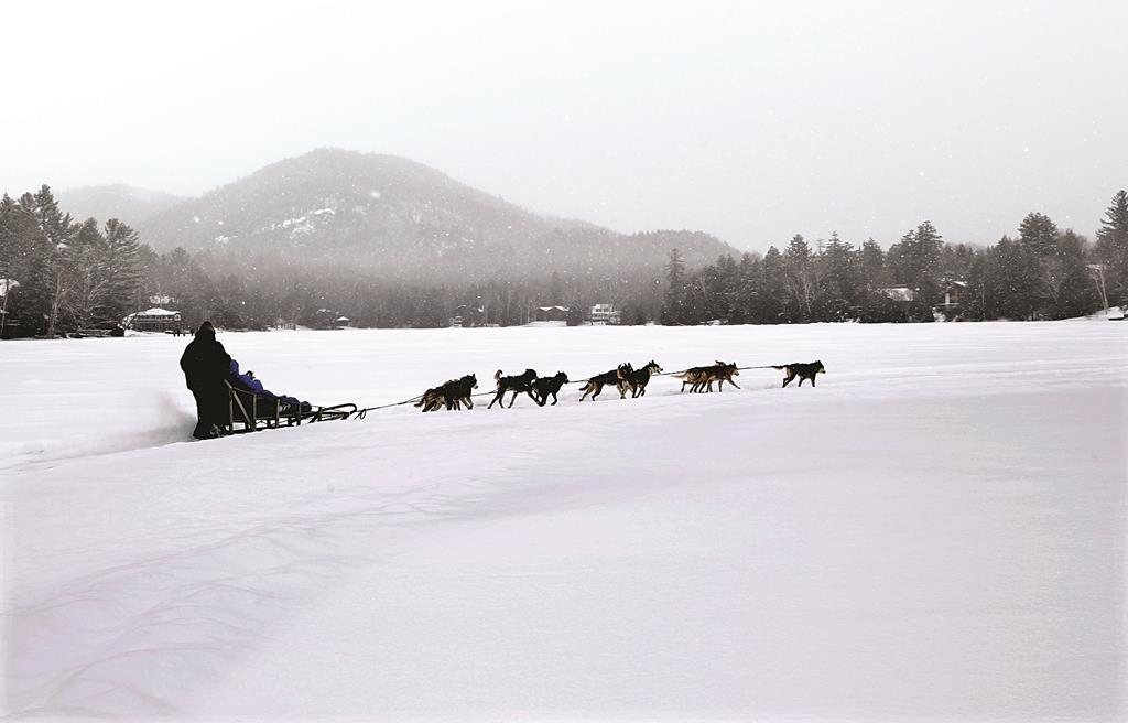 John Houghton and his sled-dog team ride around Mirror Lake Friday in Lake Placid, N.Y. (AP Photo/Mel Evans)