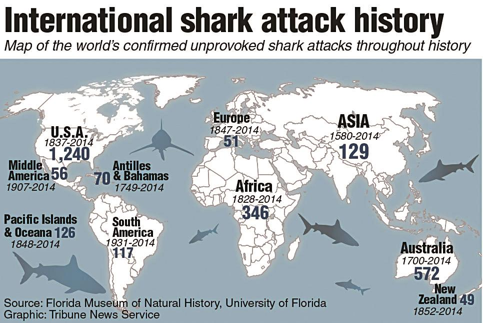 north carolina shark attacks on rise because more people in water experts say