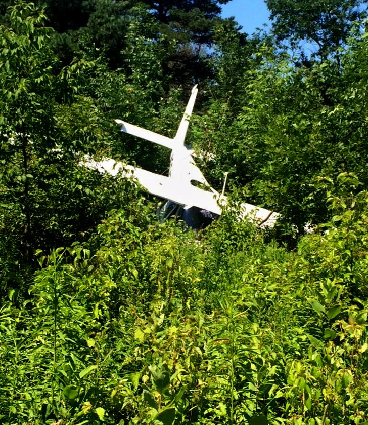 A single-engine airplane rests in the trees Thursday after crashing in Sheridan, N.Y. (Chautauqua County Sheriff's Office via AP)