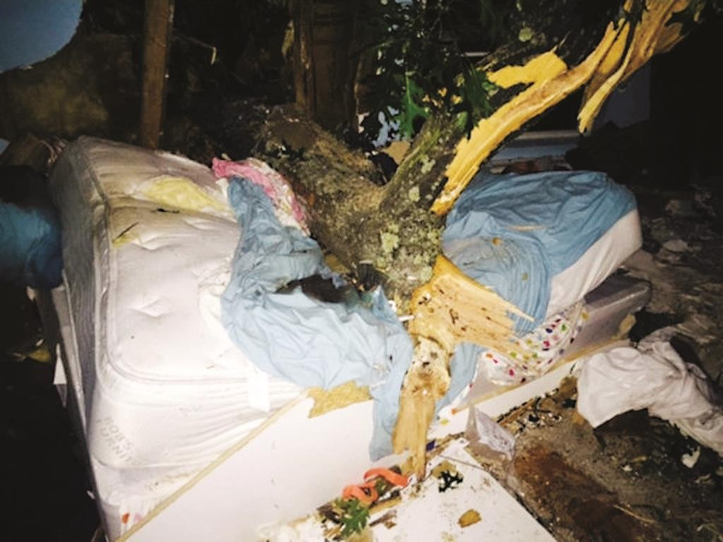 A tree rests on the bed of a Long Island woman Monday morning after she was freed. (Vigilant Fire Company)